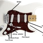 Learn the Parts of the Guitar Starting With the Guitar Body